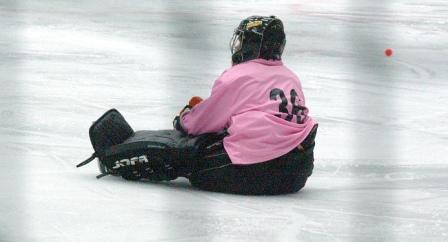 fredik fahlsted eishockey